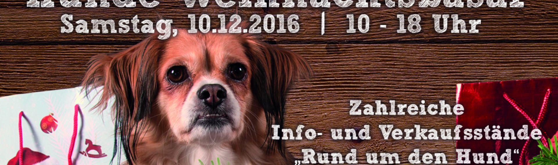 Hunde-Weihnachtsbasar Krewelshof