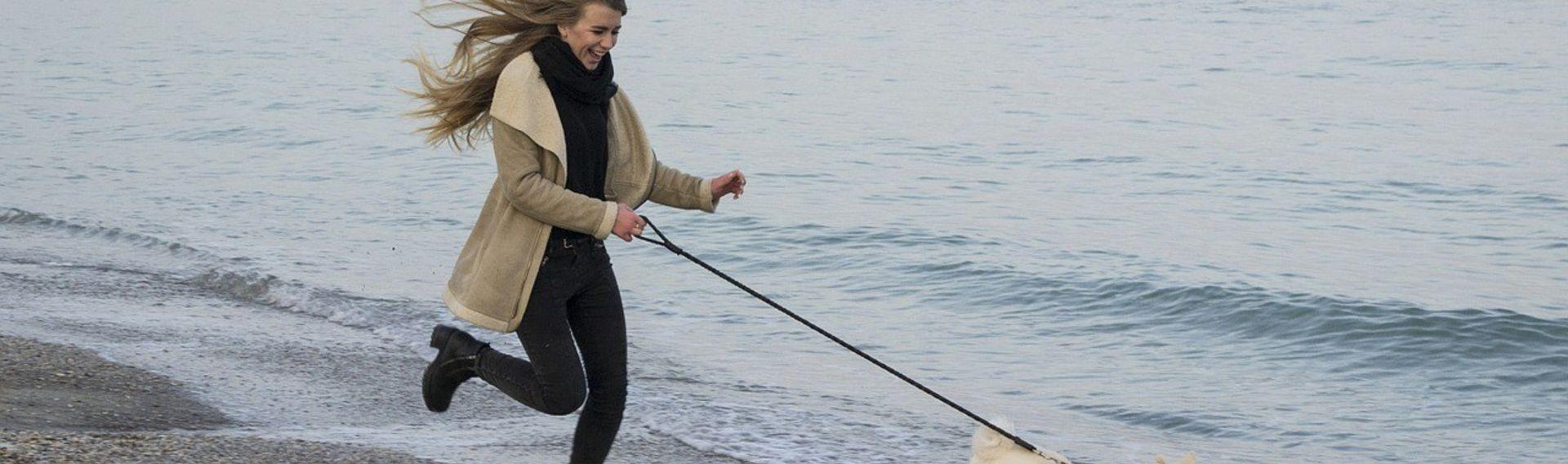 Hundstage – Hier Informationen Termine Deutschland Sylt
