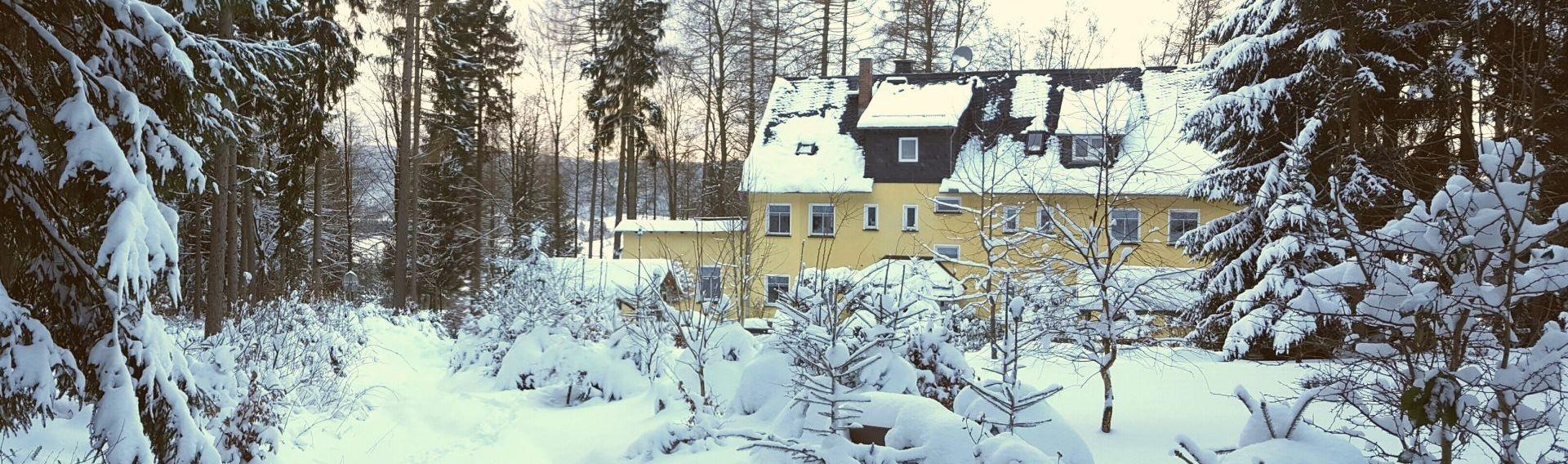 Urlaub mit Hund im Thüringer Wald