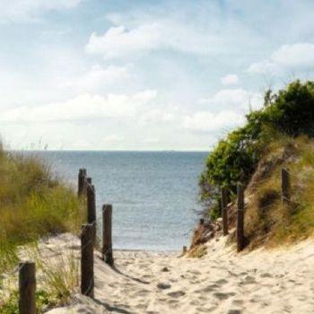 Top Ferienwohnung Sankt Peter Ording Nordseeurlaub mit Hund