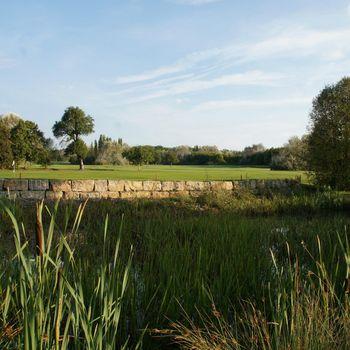 Golfen mit Hund in Bayern