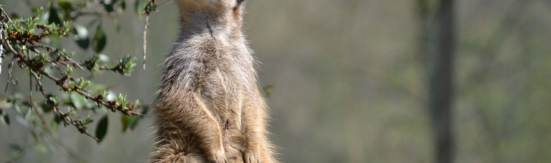 Ausflug NRW mit Kind – Tierpark Hamm