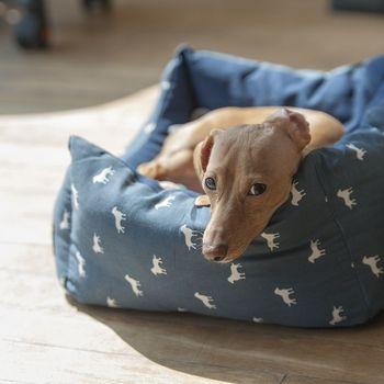 Pension mit Hund