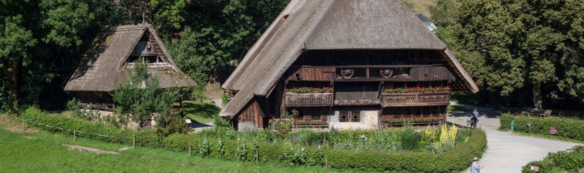 Schwarzwald Ausflug
