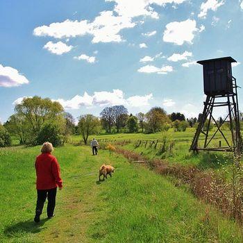 Geocaching – Schatzsuche mit Kind & Hund Deutschland