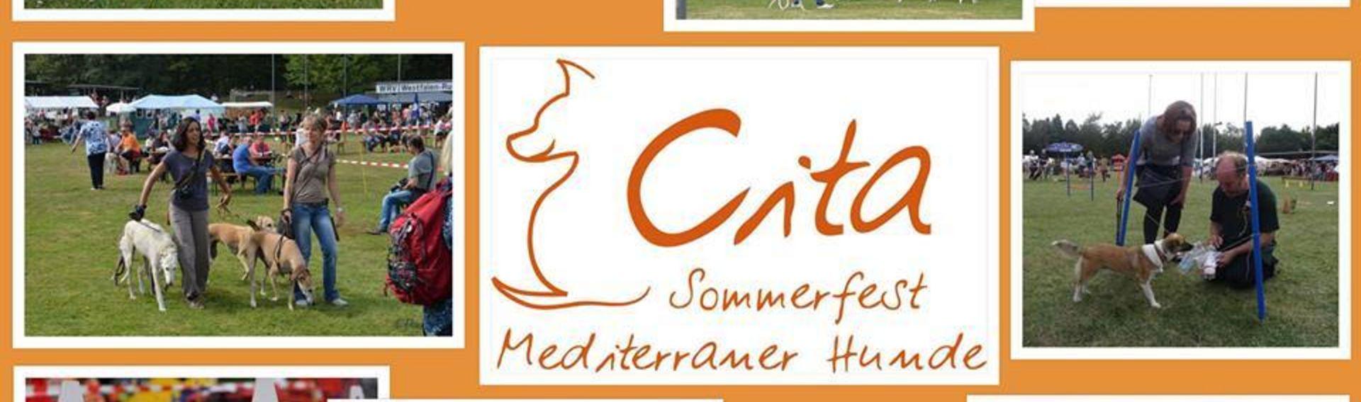 Cita – Sommerfest mediterraner Hunde