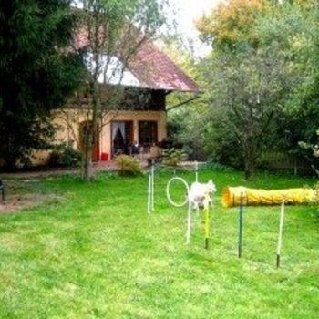 Ferienwohnung mit Hundeschule am Harz