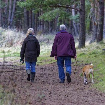 Wildpark im Spessart mit Hund