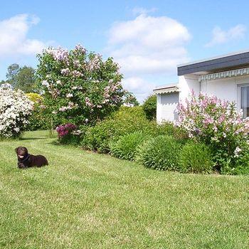 Ferienhaus mit Hund eingezäunter Garten