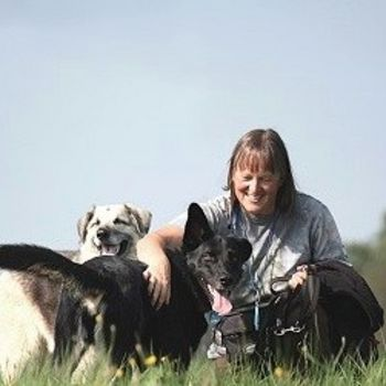Hundeschule Danny – Heidekreis