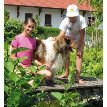 Zelten mit Hund am Hahnenkamm – Campingplatz Hasenmühle