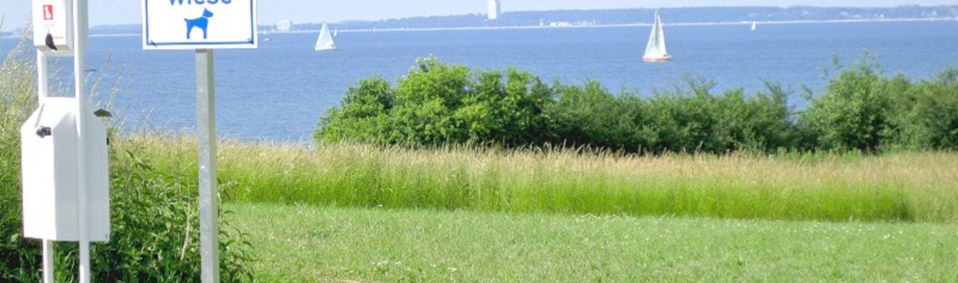 Camping an der Ostsee mit Hund