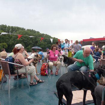 Hundewandertour mit Bootsfahrt auf dem Rhein