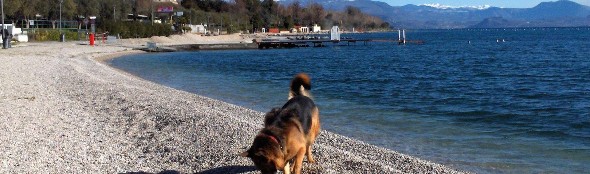 Ferienwohnung Gardasee 2-6 Personen + Hund