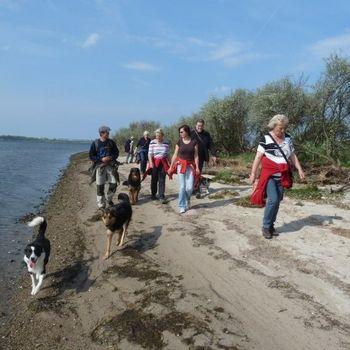 Ostsee Hundeschule am Meer