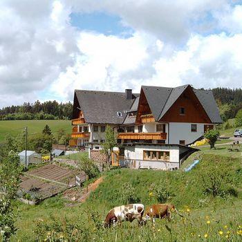 Schwarzwaldurlaub mit Hund, 2 gemütliche Ferienwohnungen