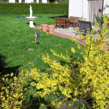 Wanderurlaub mit Hund Allgäu – Gästehaus Andrea