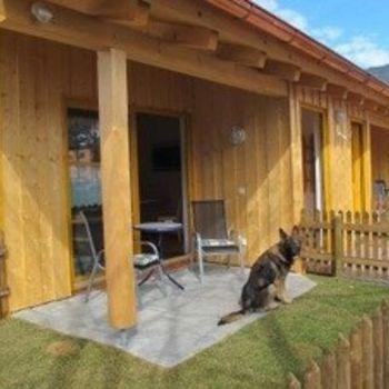 Hundsporthotel im Oberammergau – Hundeseminare im Hotel Wolf