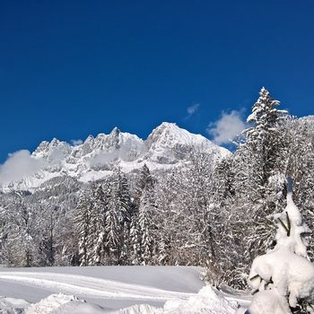 Winterferien mit Familie und Hund in Tirol – Hundeloipe Achensee