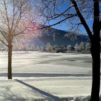 Winterurlaub mit Hund Österreich – Seefeld