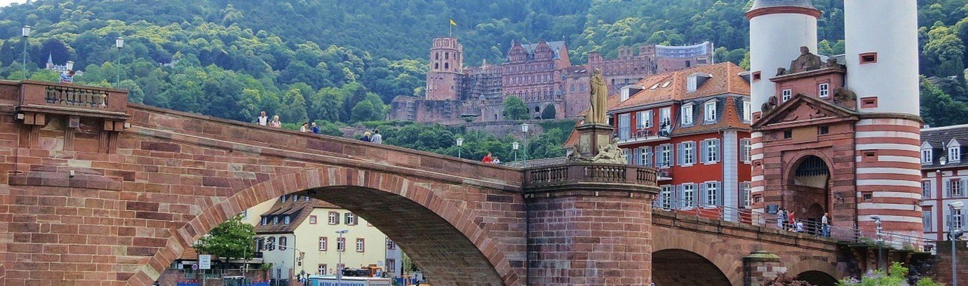 Schloss Heidelberg und Schlossgarten mit Hund